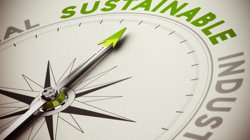 Governments Involvement in Sustainability Reporting
